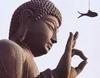 불교의 공空 사상